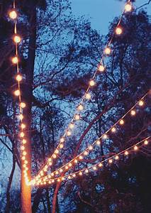 a canopy of string lights in our backyard gray house studio With outdoor lighting tree canopy