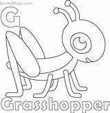 Grasshopper Coloring Coloringfolder Sheets Printable Happy sketch template