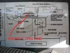31 Jeep Cherokee Evap System Diagram