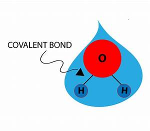 Water Molecule Bonds - Bing images