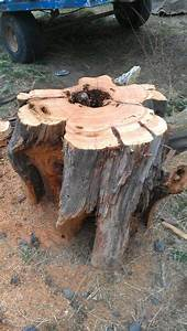 Evolution of a stump: From natures sculpture to mine - by