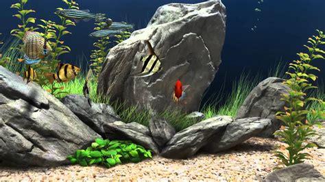 aquario dpara pcahora en hd p screensaver