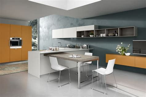 kitchen designs with choices