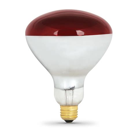 250 watt heat l 250 watt incandescent r40 heat l feit electric