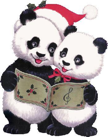 gifs animados de ositos de navidad 1000 gifs pandas panda art christmas panda cute