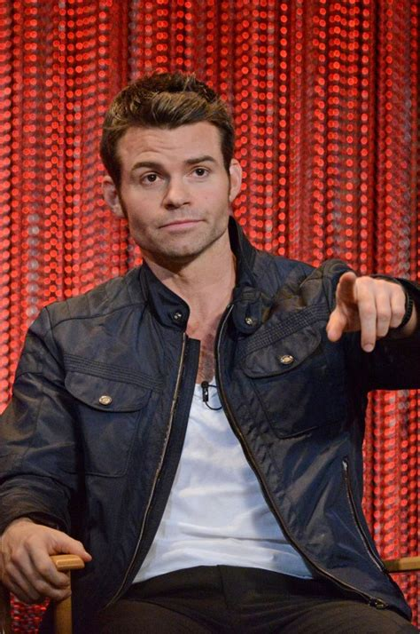 daniel gillies net worth celebrity sizes