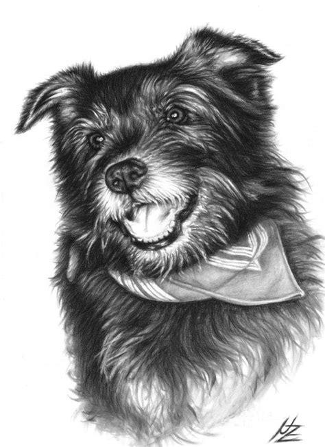 laughing dog drawing  nicole zeug wwwarts  dogsde