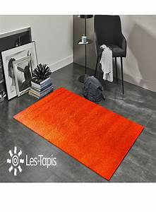 tapis de salon orange 10 idees de decoration interieure With tapis salon orange