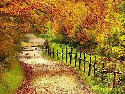 Scenery Autumn Wallpapers Backgrounds Fall Desktop Pretty