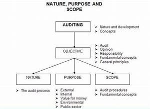 The nature purpose and scope of an audit and review for Internal audit scope template