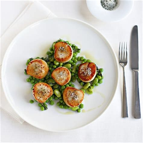 gordon ramsay cuisine gordon ramsay scallops with minted peas and beans fish