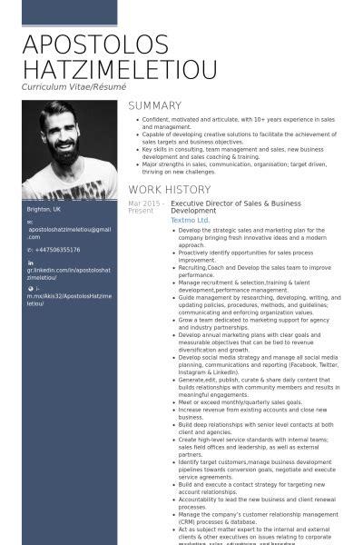 sample executive resume templates wisestep