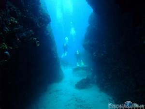 Image Gallery Underwater Canyons