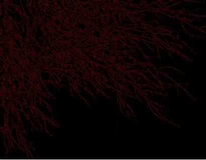 Dark Crimson Wallpapers Abstract Deviantart Backgrounds Purple