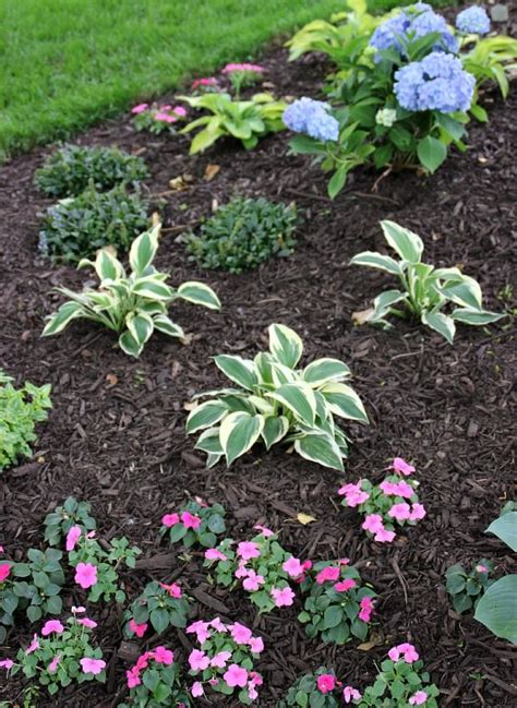 mulching beds how to choose and apply mulch to your flower beds