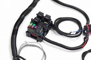 Ls1 Stand Alone Engine Harness -cable Throttle