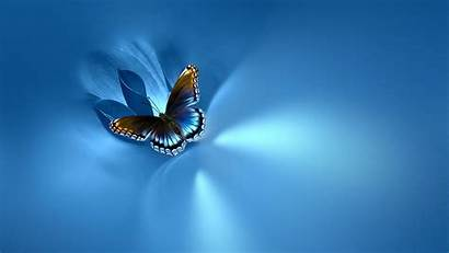 Butterfly Desktop Wallpapers Background Backgrounds Screen Baltana