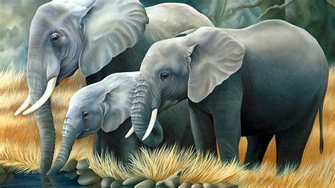 4k Wallpaper Of 3d Elephant Hd Wallpapers