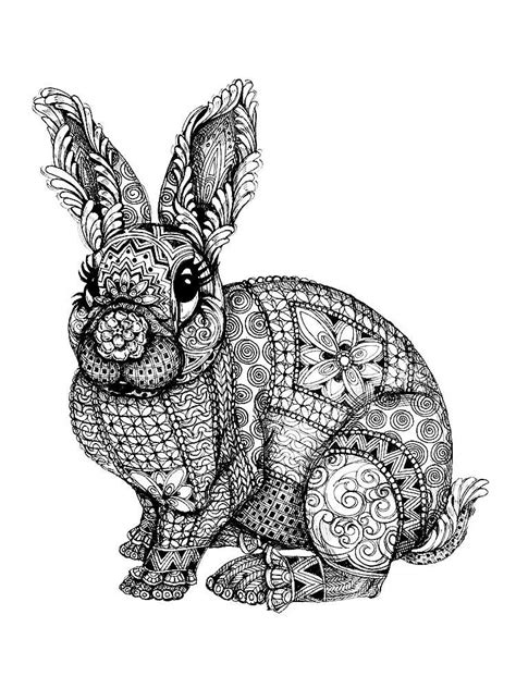 rabbit coloring pages  adults printable   rabbit coloring pages