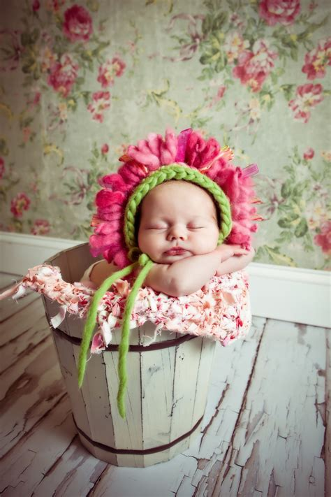 images  baby photography baskets  pinterest