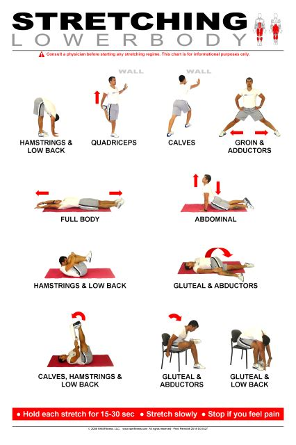"See more ideas about office exercise, desk workout, exercise. Lower Body Stretching Poster 24"" x 36"""
