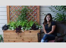 How to Build a Trellis Planter YouTube