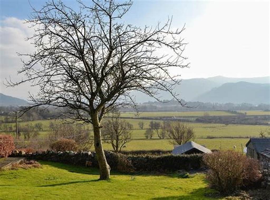 #Photos #Of #The #Tottsie #Bassenthwaite, #Near #Cockermouth