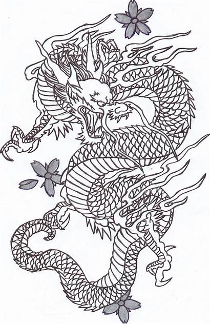 Chinese Dragon Drawing Drawings Cliparts Dragons Attribution