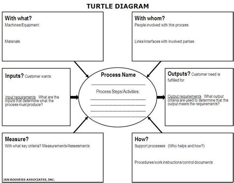 turtle diagram template printable turtle diagrams diagram site