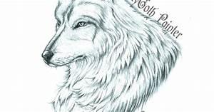 LadyGoth Painter: Dibujo a lapiz de Lobo