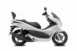 Pieces Moto Honda : dosseret scooter shad pour honda pcx125 10 16 street moto piece ~ Medecine-chirurgie-esthetiques.com Avis de Voitures