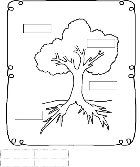 parts of a tree worksheet trees school theme