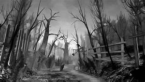Drawing Bird Path Trail Bw Trees Creepy Hd Wallpaper