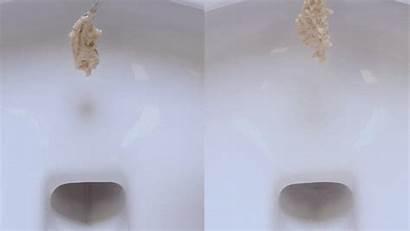 Toilet Toilets Squash Water Fail Bowl Wastage