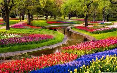 Spring Garden Wallpapers Desktop Background Pixelstalk 4k