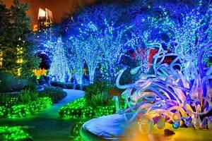 Atlanta botanical gardens transformed into winter for Botanical gardens lights