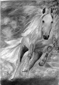 Running horse by KristiT on DeviantArt