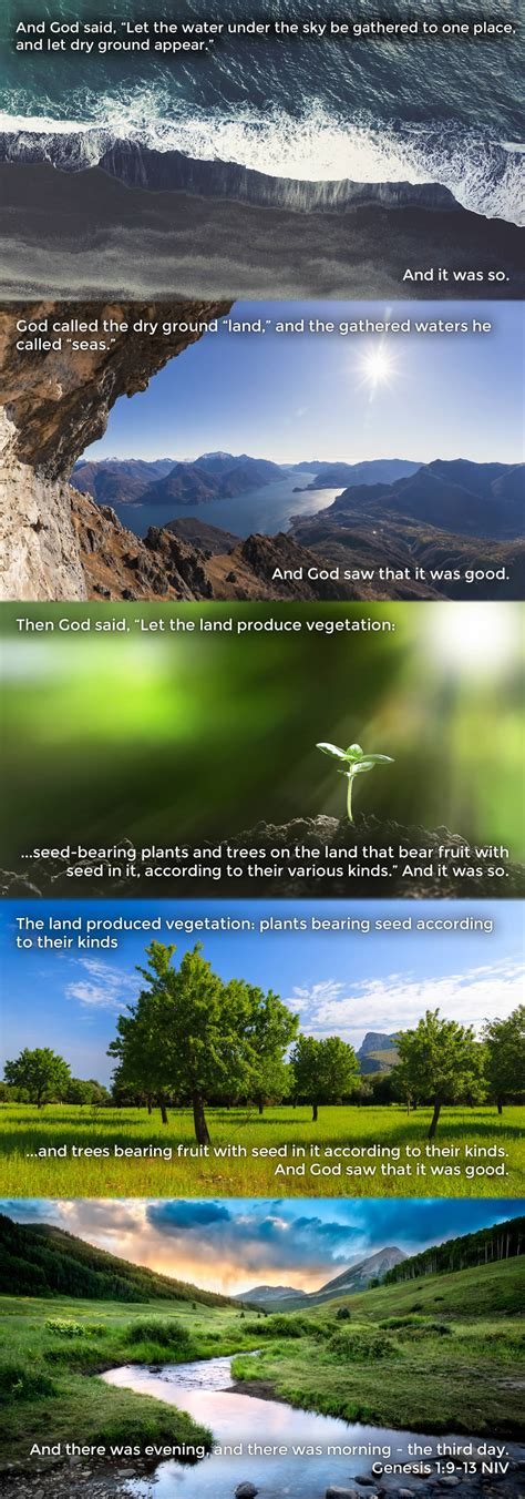 On the Third Day, God Said... 'Let the Land Produce ...