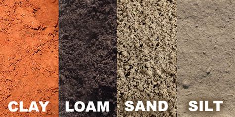 How To Improve Different Types Of Soil For Planting