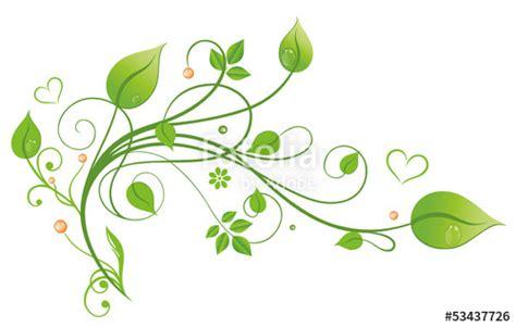 Blumenranke Grün Horizontal by Quot Laub Filigran Bl 228 Tter Ranke Gr 252 Nt 246 Ne Quot Stockfotos Und