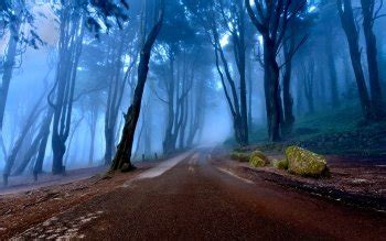 ultra hd road wallpapers background images