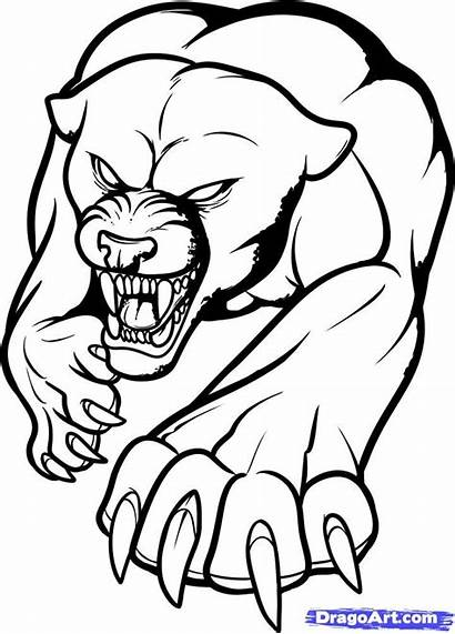Panther Outline Tattoo Tribal Drawings Coloring Jaguar
