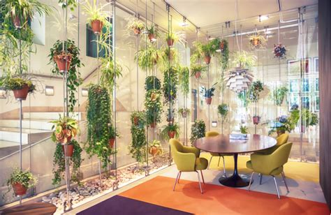 Biophilic office design how to bring nature into the