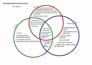 Comparing Plant And Animal Cells Venn Diagram