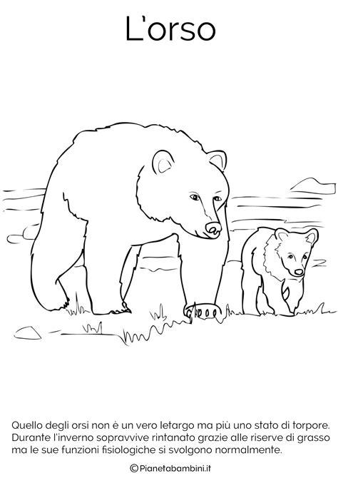 disegni  animali che vanno  letargo da colorare