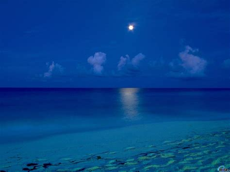 Beach At Night Wallpapers  Wallpaper Cave