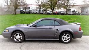 2004 Ford Mustang Convertible 40th Anniversary Edition