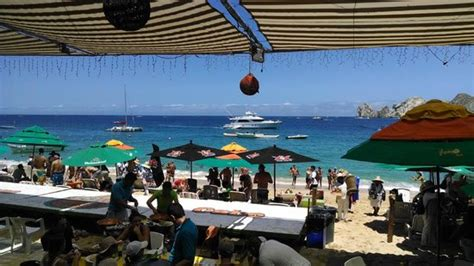 mango deck cabo happy hour best food in cabo san lucas travel guide on tripadvisor