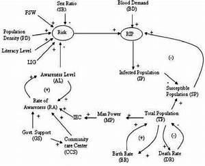 Causal Loop Diagram For Hiv  Aids Model