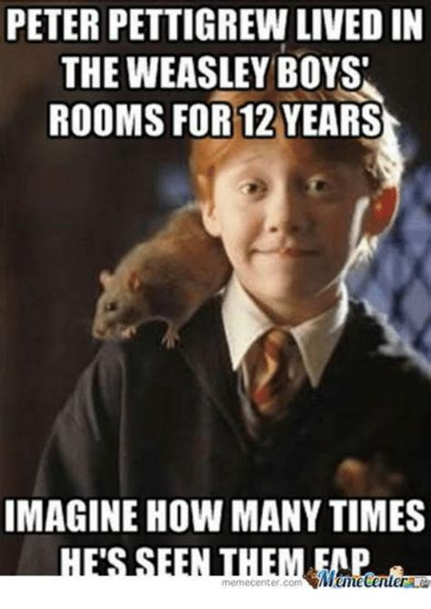 peter pettigrew lived   weasley boys rooms